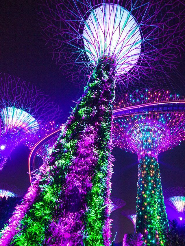 Garden Rhapsody Light Show Gardens By The Bay Singapore Singapore Garden Gardens By The Bay Light Show