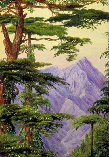 Deodars and the Choor Mountain from Nahl Dehra, India by Marianne North 1878