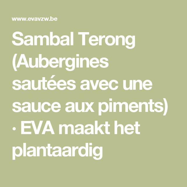 Sambal Terong (Aubergines sautées avec une sauce aux piments) · EVA maakt het plantaardig