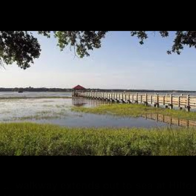 14 best images about on pinterest for Red fish hilton head sc