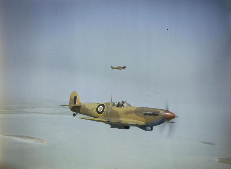 Two clipped-wing Supermarine Spitfire V's of No 40 Squadron, South African Air Force serving in a ground support role. ER622/`WR-D'