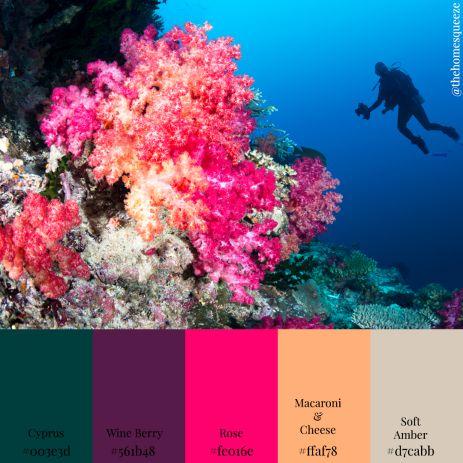 'Pretty Coral' Color Scheme in 11 Color Schemes: Seascape Edition.