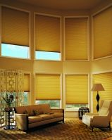automatic blinds