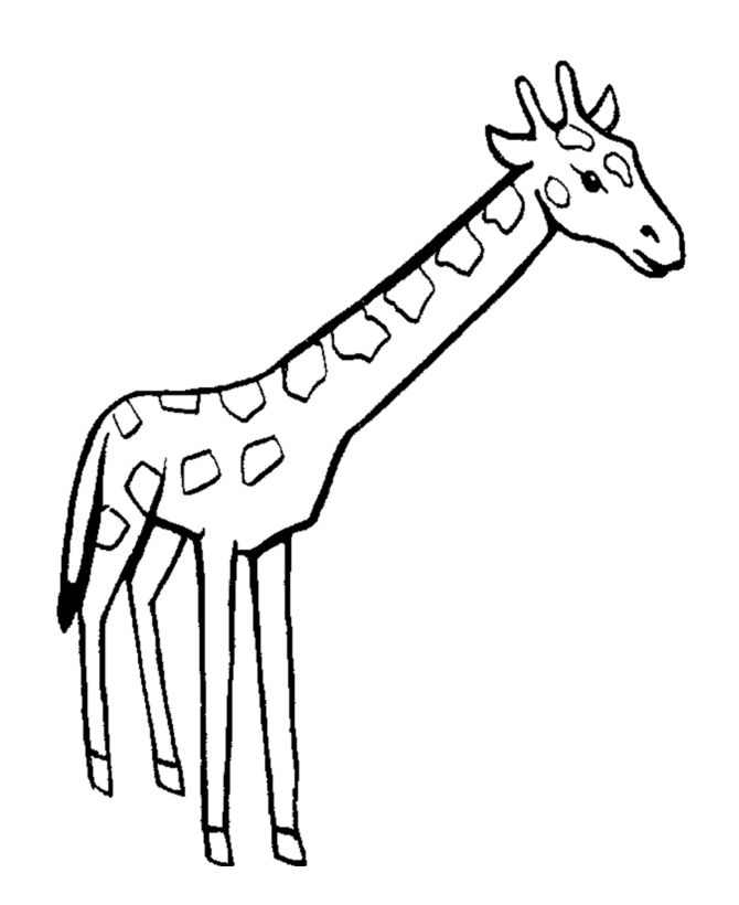 easy to color giraffe giraffe coloring page gifties pinterest giraffe wild animals and kids activity sheets