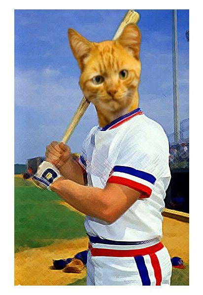 Baseball player collage #cats