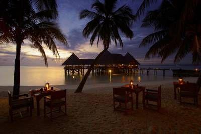 gili lankanfushi - Google Search