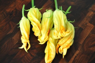 Google Image Result for http://girlmeetsfood.com/wp-content/uploads/2010/07/Squash-Blossoms4-400x265.jpg