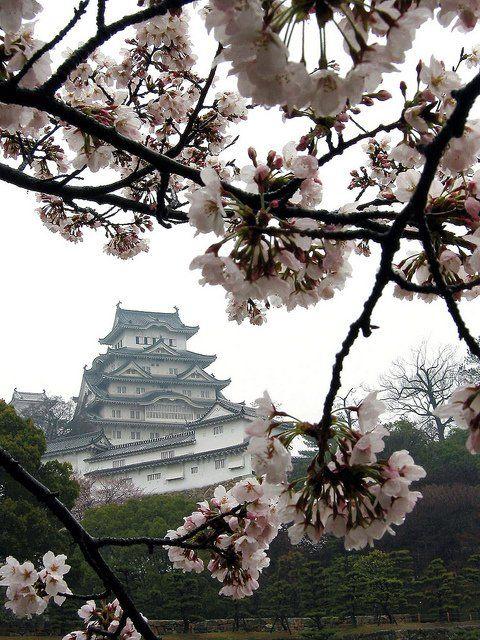 Himeji Castle #japan #himeji