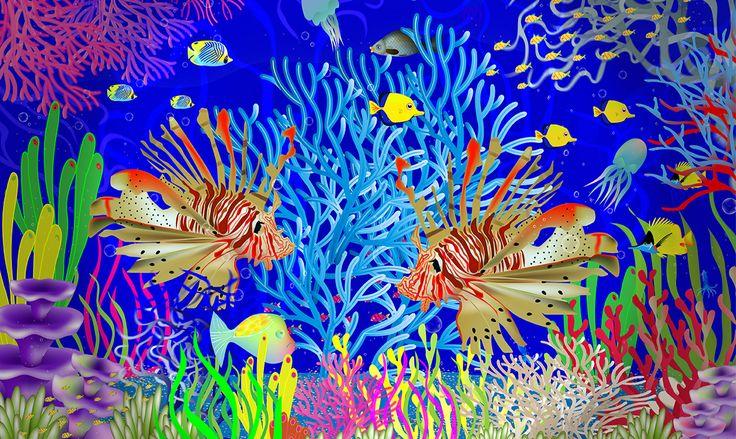 Arrecife #RevolutionartDesign