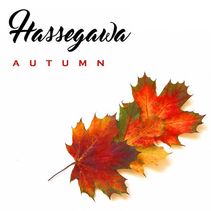 Hassegawa 'Autumn' EP