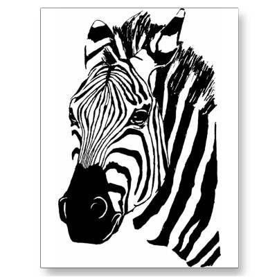 Best 25+ Zebra drawing ideas on Pinterest | Zebra painting ...