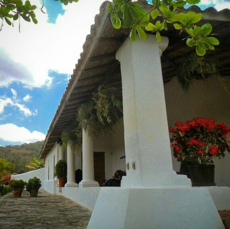 Hacienda La Trinidad,Caracas,Venezuela.