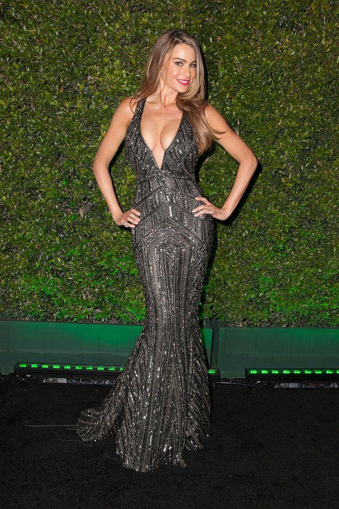 Fox And FX's 2014 Golden Globe Awards Party - Sofia Vergara
