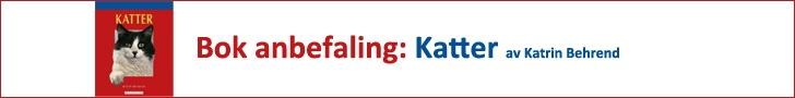 Fakta om katterasen Abyssinier http://www.kattergisbort.no/2012/09/22/fakta-om-katterasen-abyssinier/ … #Abyssinier #katt #katteraser #katter