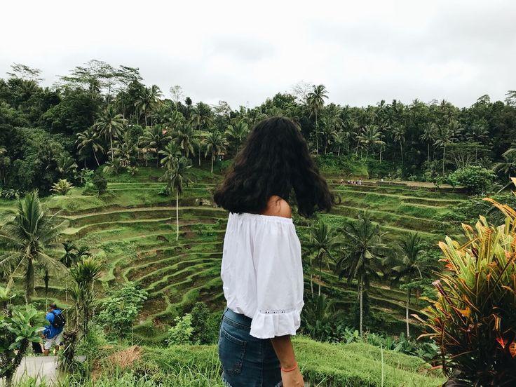 ✨ Pinterest: ash_ january Rice Terraces, Ubud, Bali  #rice #terraces #riceterraces #bali #ubud #lush