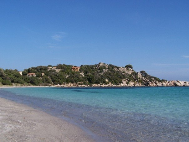 Welcome to our Corsican office :)