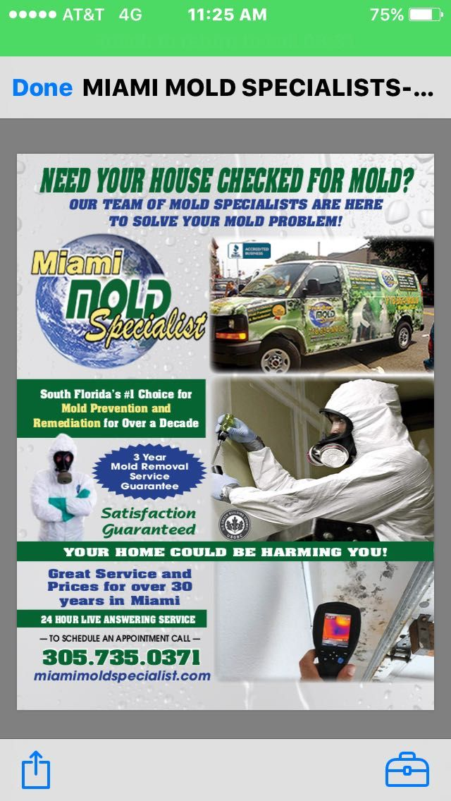 Miami Mold Specialist – Certified mold remediation in Miami and Fort Lauderdale from trained professionals. We remove and cleanup mold in businesses homes industrial and commercial properties.