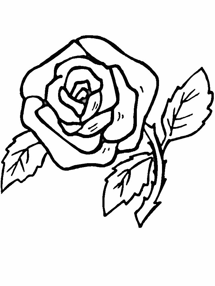 realistic flower coloring pages coloring picture hd for kids
