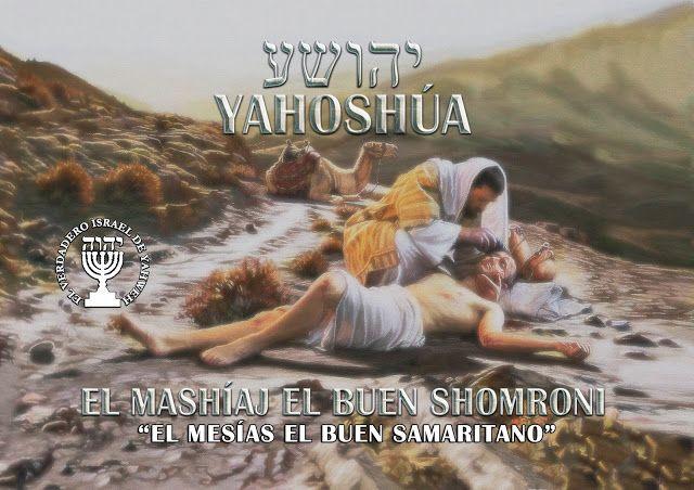 Biblia Kadosh Israelita Mesianica Biblia Hebrea Libros