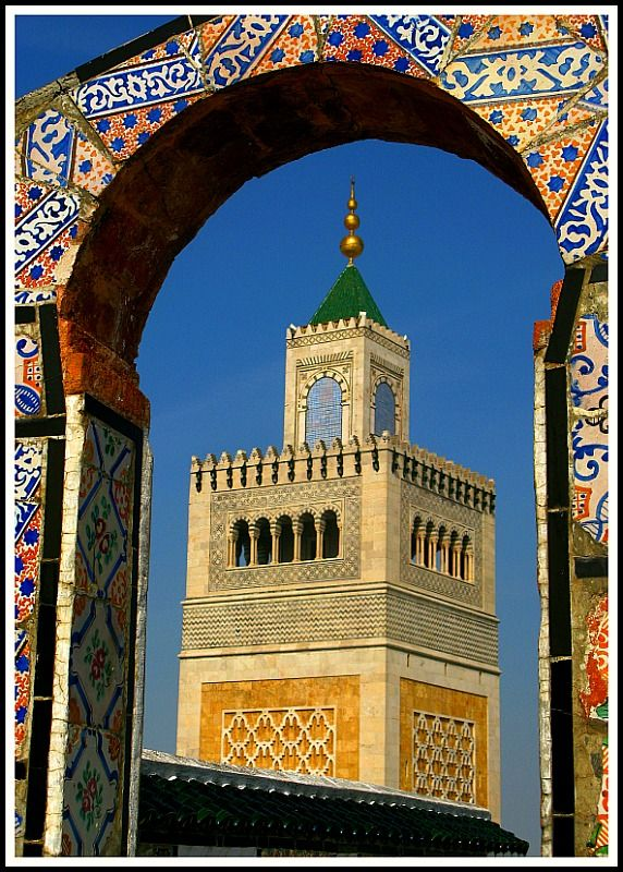 Tunis, Tunisia. (mosquée, architectural beauty)
