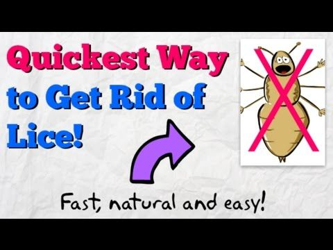 how to kill pubic lice naturally