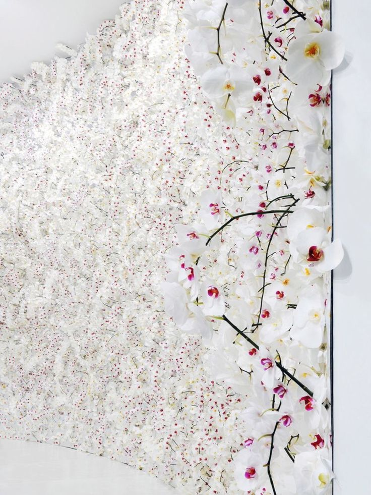 floral wall by mark colle for christian dior