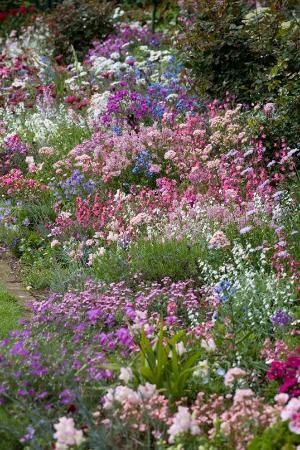 english cottage garden borders - This is what Im trying to achieve. I only wish ...