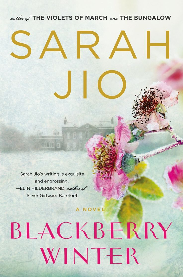 Book club pick for February 2016 Blackberry Winter by Sarah Jio