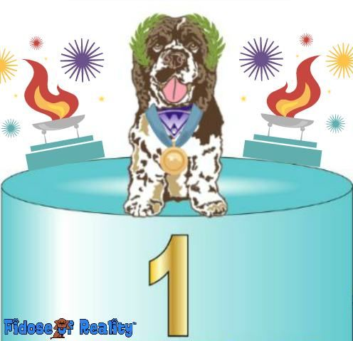Summer Games Dog Photo Contest - Fidose of Reality
