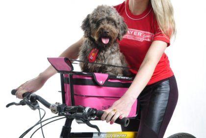 opções de cadeirinha de cachorro para bicicleta