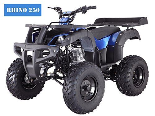 TaoTao Atv Rhino 250cc Big Rugged Wheels (Blue) - http://www.caraccessoriesonlinemarket.com/taotao-atv-rhino-250cc-big-rugged-wheels-blue/  #250Cc, #Blue, #Rhino, #Rugged, #TaoTao, #Wheels #ATV