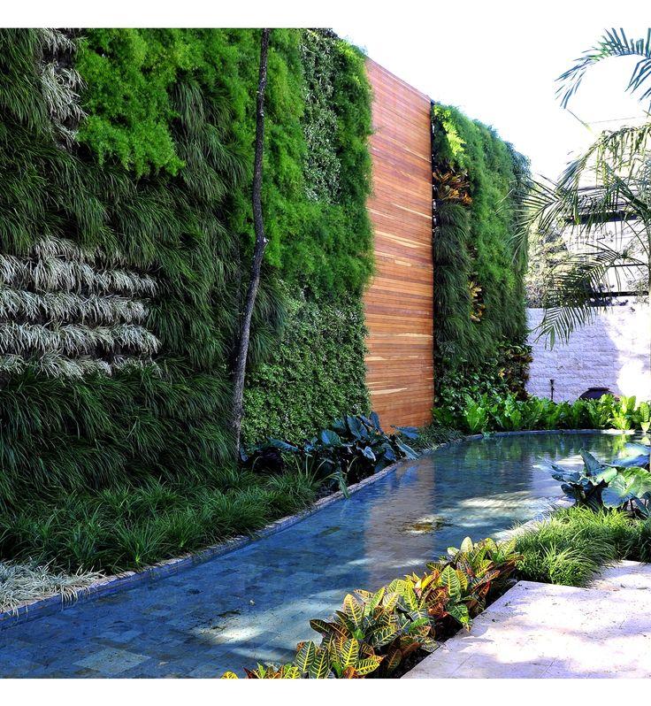 Alex Hanazaki Paisagismo   – jardim vertical