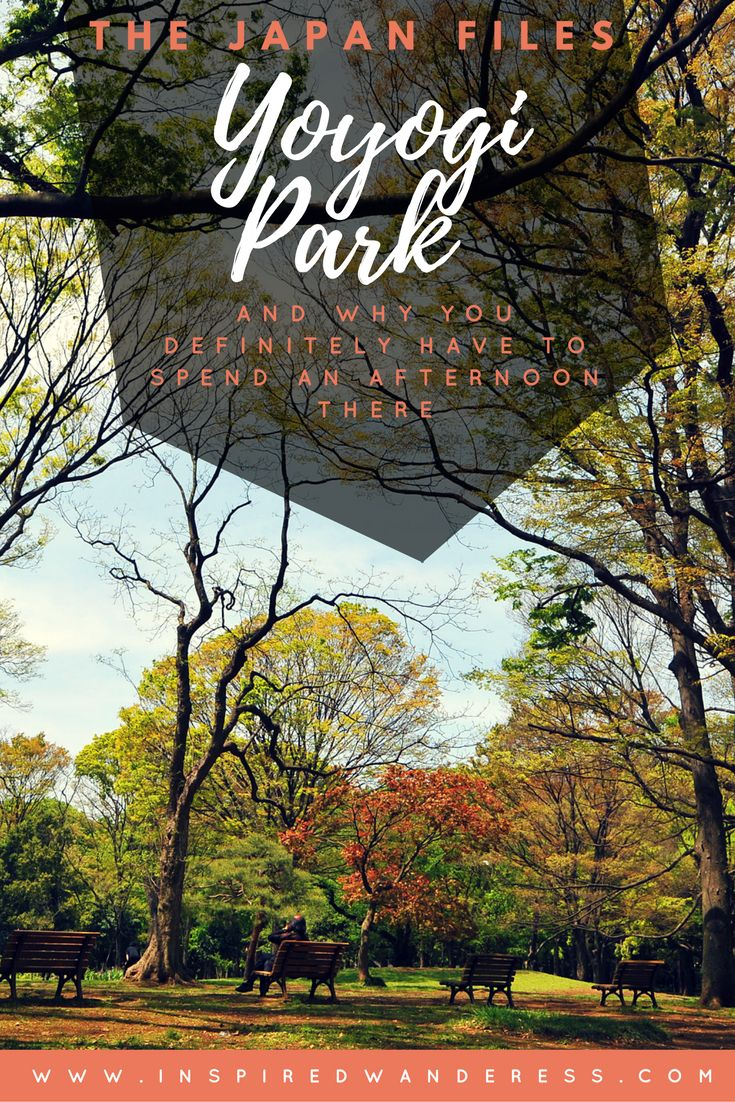 The Japan Files: Reason's to relax in Yoyogi Park. | Inspired Wanderess.   A trip to Yoyogi Park can not only calm your soul and remind you that fashion shopping and hi-tech gadgets aren't the only things to life in Tokyo but it can also lead to a world of wonderful memories. --   Read more @ http://inspiredwanderess.com/yoyogi-park-and-why-you-definitely-have-to-spend-an-afternoon-there/