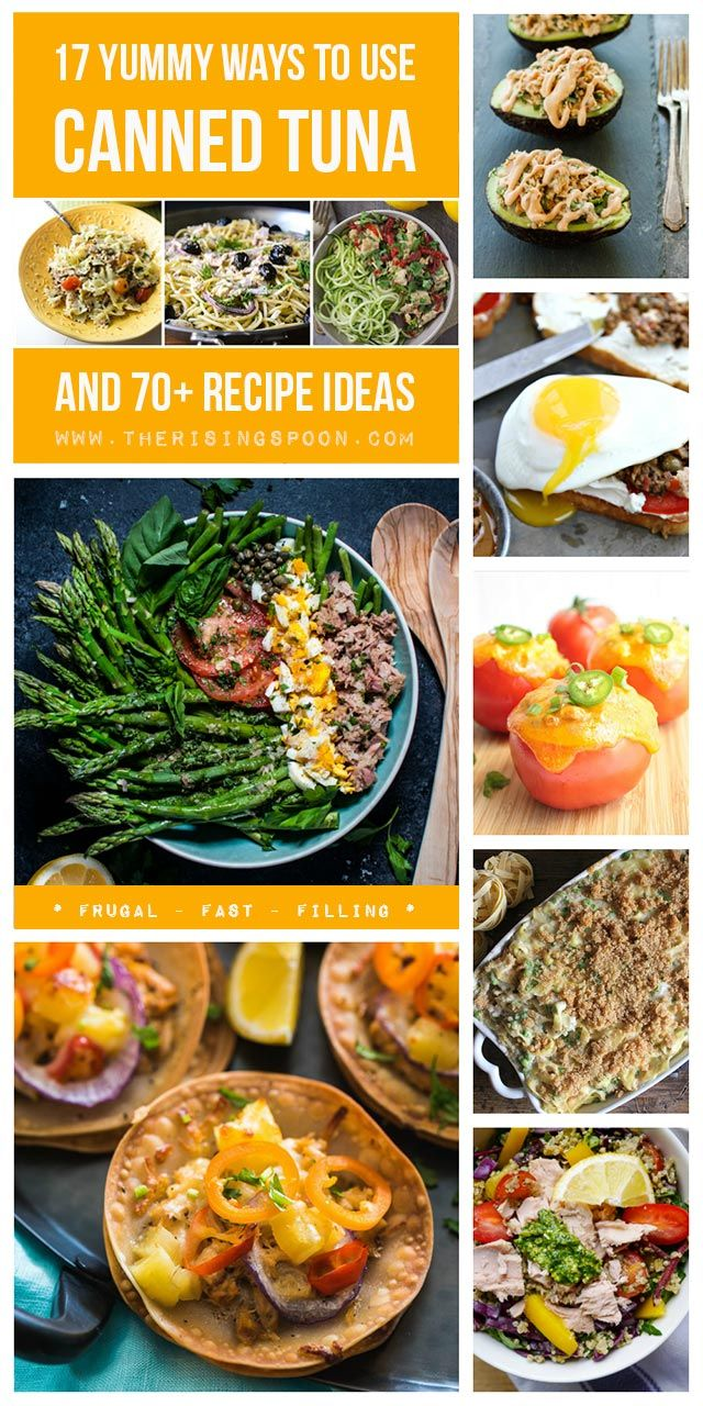 100+ Canned Tuna Recipes on Pinterest