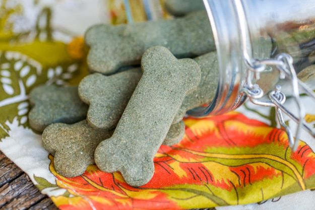 DIY Dog Hacks - Breath Freshening Dog Treats- Training Tips, Ideas for Dog Beds and Toys, Homemade Remedies for Fleas and Scratching - Do It Yourself Dog Treat Recips, Food and Gear for Your Pet http://diyjoy.com/diy-dog-hacks