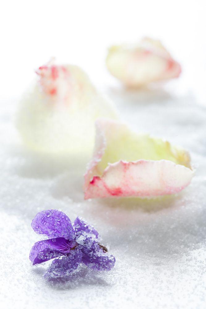 Cristaliza con azúcar los pétalos de tus flores
