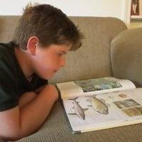 ADHD tutoring for children – EBL Coaching #learning disabilities in #children