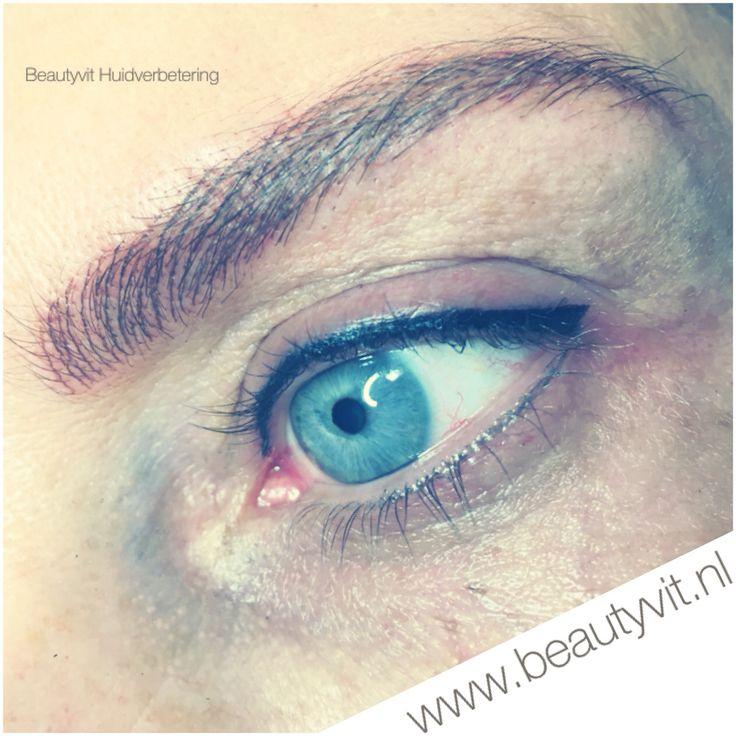 Permanente make-up Hairstroke wenkbrauwen en boven eyeliner. Met labina pigmenten gewerkt. Beautyvit Huidverbetering Dreef 10 4813eg Breda. 0765223838 ingo@beautyvit.nl www.beautyvit.nl