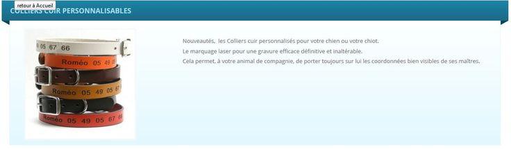 Collier cuir de très belle qualité, personnalisé à la demande (marquage laser inaltérable). http://www.laboutiqueapierrot.com/colliers-personnalisable/categorie/25/colliers-cuir-personnalisables #laboutiqueapierrot #collier #chien