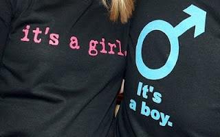 Gender Party Idea