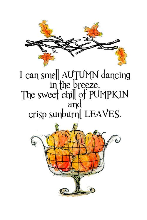 I can smell AUTUMN dancing in the breeze. The sweet chill of PUMPKIN and crisp sunburnt LEAVES.