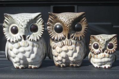 Mid Century: Ceramics Owl, Century Owl