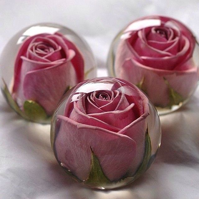 Are your wedding flowers just too beautiful to part with? Make your bouquet into stunning paper weights! Photo Credit: flowerpreservationworkshop.co.uk