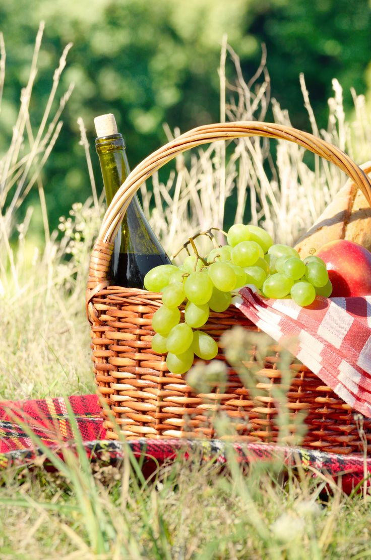 De zon schijnt: dit zijn de mooiste picknickmanden