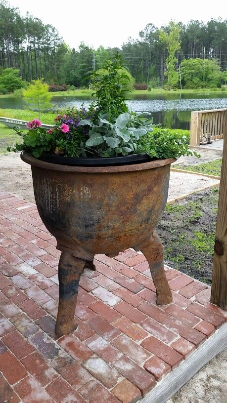 Antique industrial pressure cooker is a great planter!