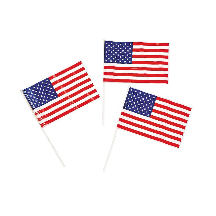 Small American Flags - OrientalTrading.com use to line the outdoor walkways and isle - plastic