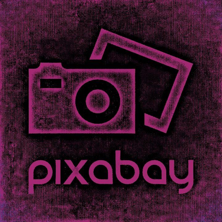 pixabay - Videos +++ https://pixabay.com/de/videos +++ https://pixabay.com/de +++ pixabay.com +++