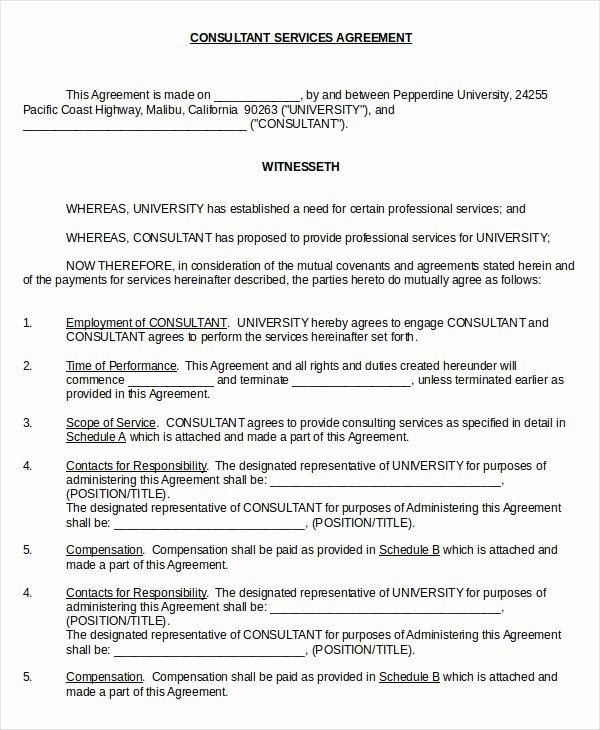 Consulting Contract Template Free Beautiful 17 Consulting