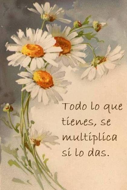 Dar desde el corazón.. y todo se multiplica, amén..