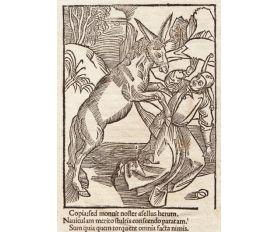 1498 год. А.Дюрер, ксилография, Осел и дурак